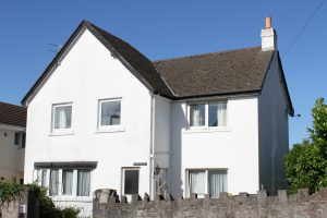 torquay dog friendly cottages